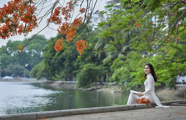 7246 1494911290063 1020 - Soạn bài: Tác giả Nguyễn Đình Chiều – văn lớp 11
